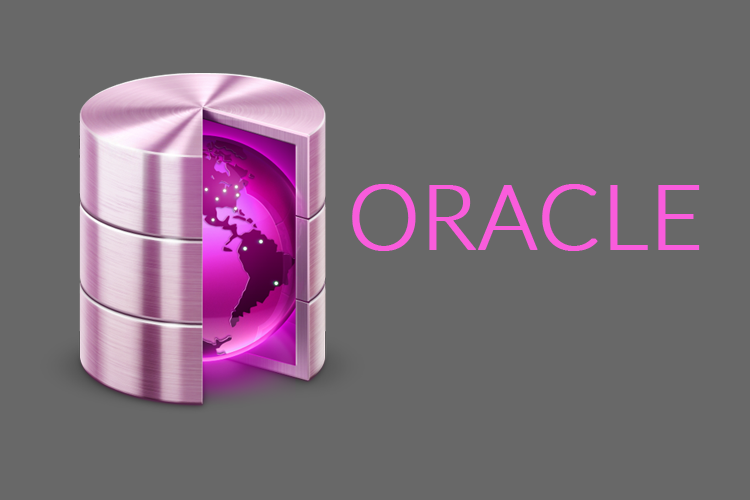 oracle summer training